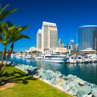 San Diego skyline with Marina in the background and a park with tropical like palm trees in the foreground.